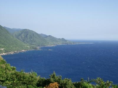 屋久島1・西部林道から栗生 018 (640x480)