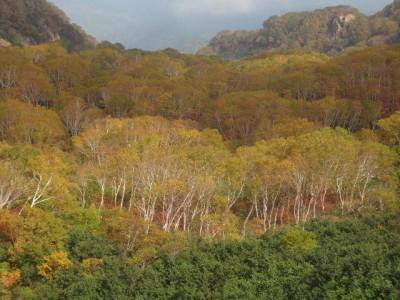 火打山・妙高山 125 (640x480)