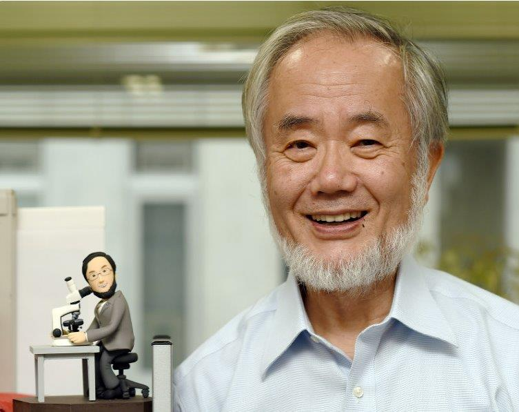 大隅良典氏がノーベル医学生理学賞受賞。日本人が3年連続。