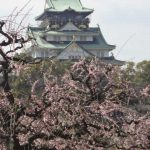 日本は、どの国から儲けているのか?