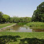 江戸のあきんどが明治の礎を築いていたんだなあ。 NHK「大江戸」を見て。
