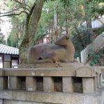 牧岡神社に初詣。